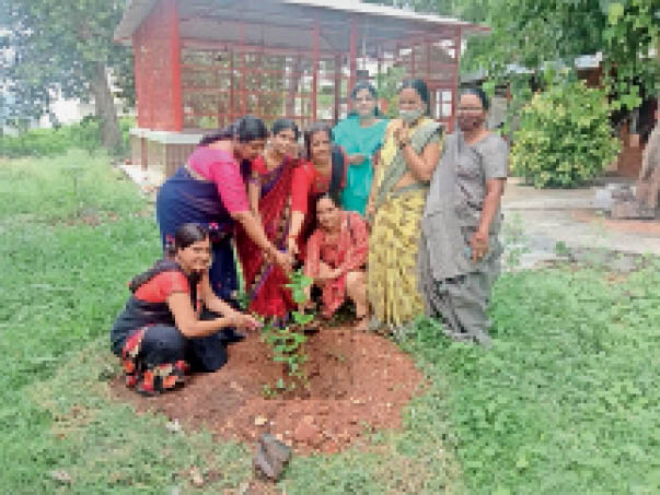 भाजपा कार्यकर्ताओं ने डॉ. श्यामा प्रसाद मुखर्जी की जयंती के उपलक्ष्य में शक्ति केंद्रों पर रोपे पौध बांसवाड़ा,Banswara - Dainik Bhaskar