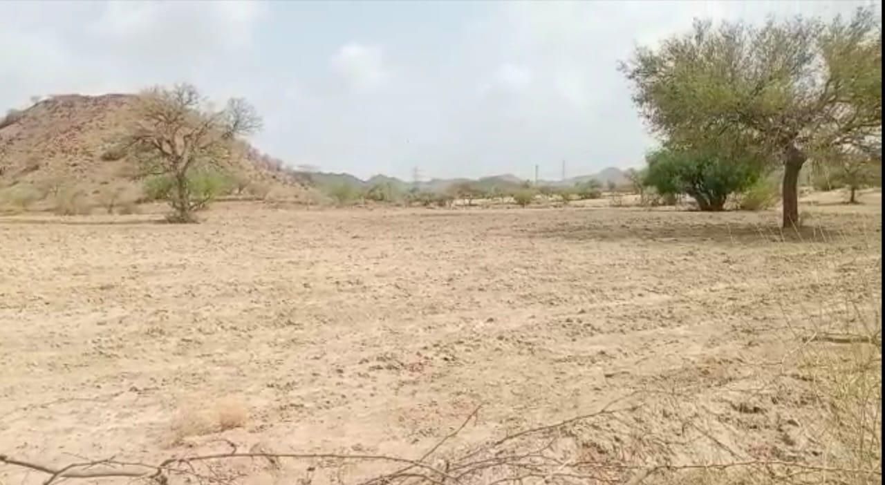 किसानों ने सफाई कर खेतों को किया तैयार। - Dainik Bhaskar