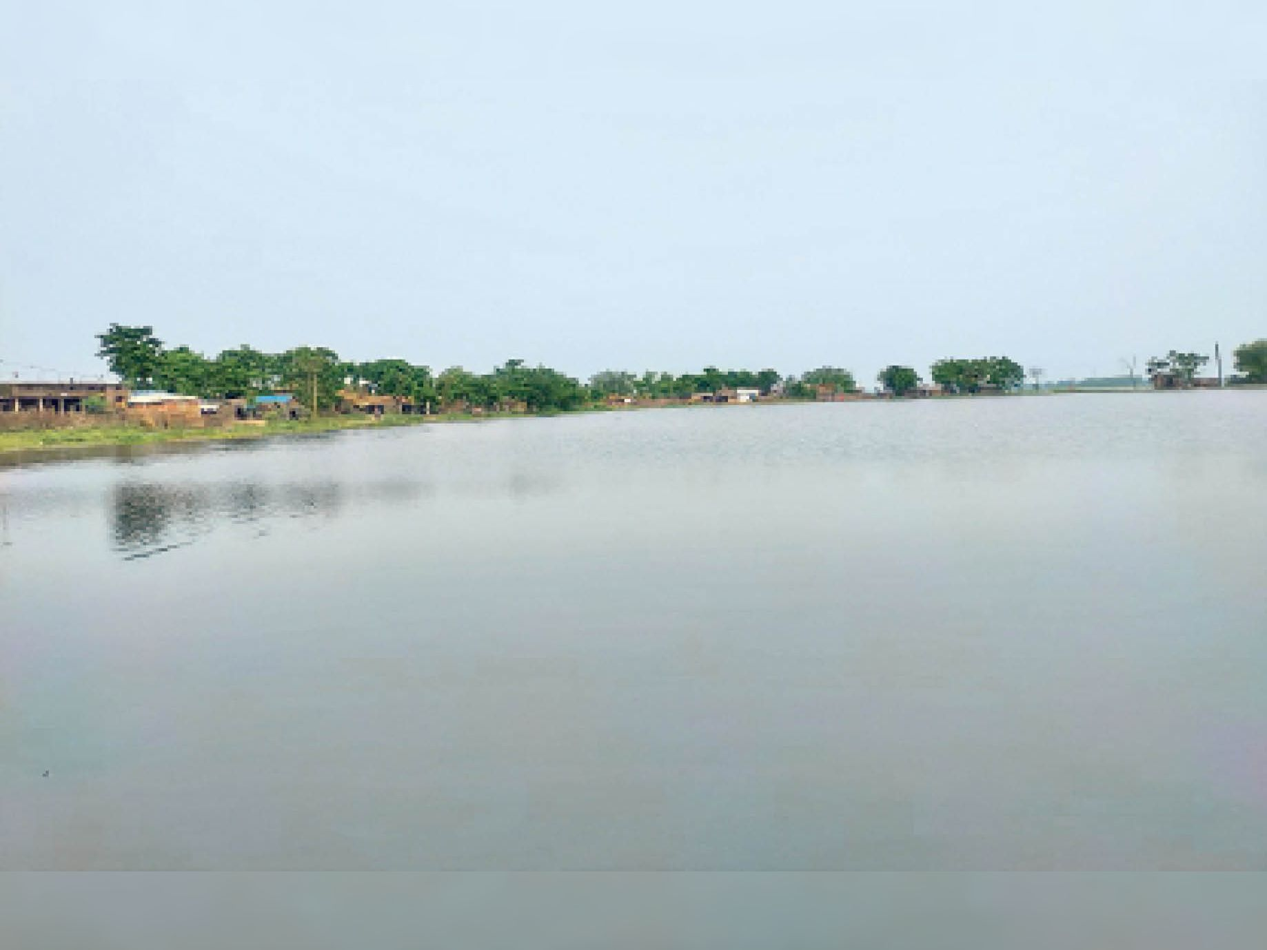 सिंघिया नदियों में जलवृद्धि के कारण बाढ़ के पानी के बीच घिरता गांव। - Dainik Bhaskar