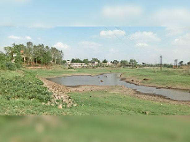कृषि विभाग का तालाब कई साल बाद पूरी तरह सूखने की कगार पर है। - Dainik Bhaskar