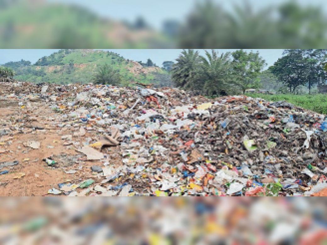 शहर के घरों से निकल रहे कचरे में प्लास्टिक ज्यादा। - Dainik Bhaskar
