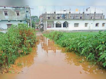इमामनगर में कच्ची सड़क पर पानी। - Dainik Bhaskar