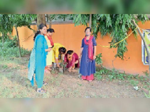 यज्ञशाला मंदिर परिसर में पौधरोपण करतीं मारवाड़ी युवा मंच के सदस्य। - Dainik Bhaskar