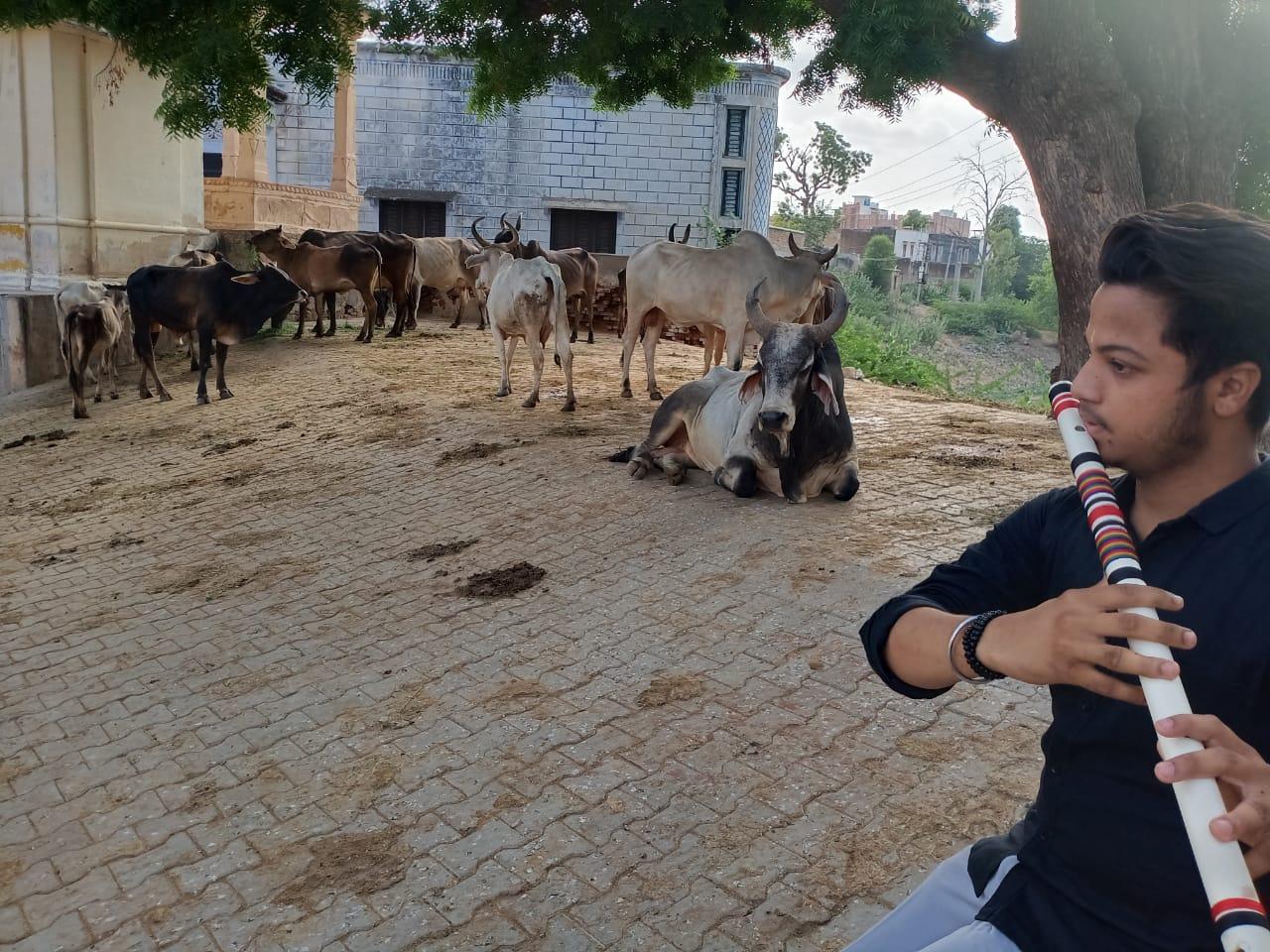 टीवी पर बांसुरी सुनी तो अच्छी लगी, इसके बाद बजाना सीखा, अब जब भी मन करता है बजाता हूं, पढ़ाई की बोरियत भी दूर हो जाती है|राजस्थान,Rajasthan - Dainik Bhaskar