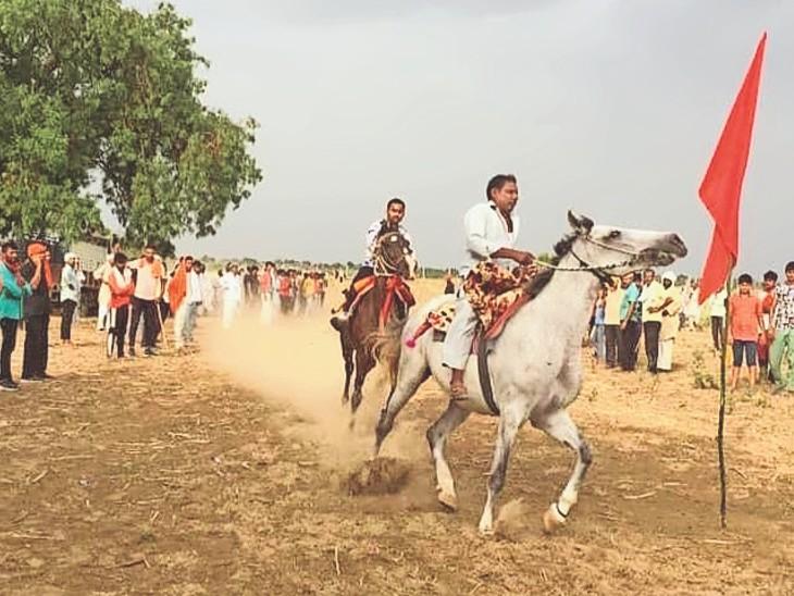 गोरमी के लिलोई गांव में पहली बार घुड़दौड़, कदम ताल और घोड़ी नाच प्रतियोगिता का आयोजन हुआ। - Dainik Bhaskar
