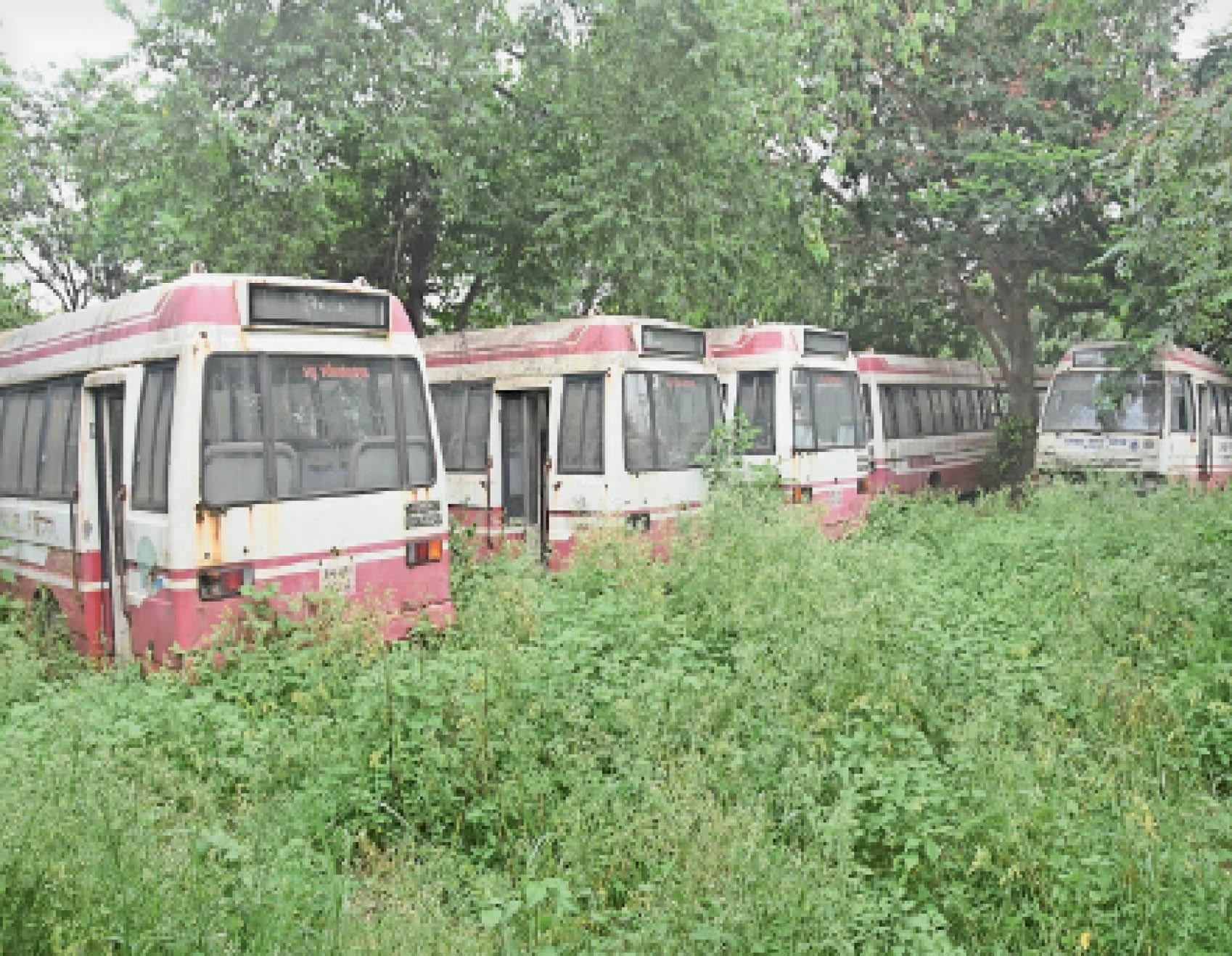 बरटांड़ का स्टैंड बना है सिटी बसों का कब्रिस्तान - Dainik Bhaskar