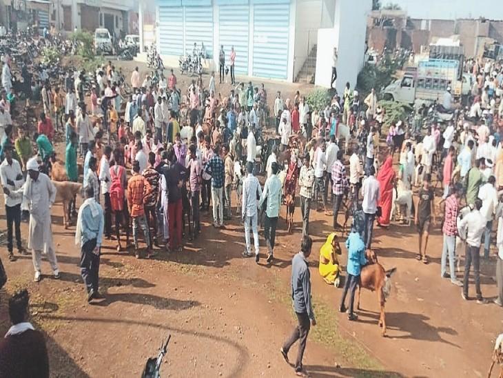 पशु बाजार व बकरा-बकरी ठेके में भीड़ लग गई। - Dainik Bhaskar