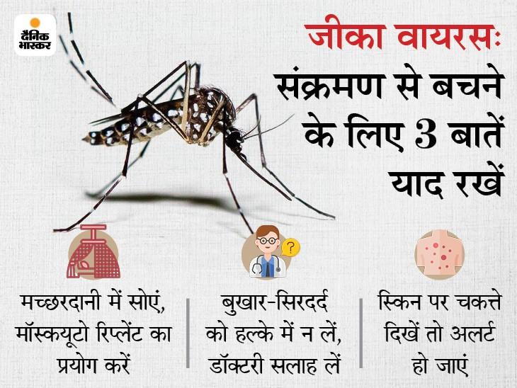 जीका वायरस का सबसे ज्यादा खतरा गर्भवती महिलाओं और नवजात को, मच्छरों से बचकर रहें और सिरदर्द-बुखार बढ़ने पर अलर्ट हो जाएं|लाइफ & साइंस,Happy Life - Dainik Bhaskar