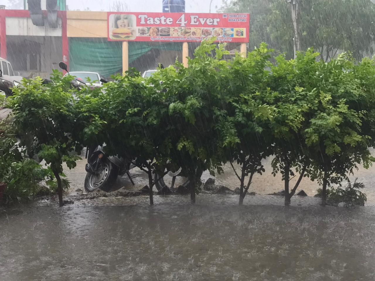 जालंधर में बारिश। - Dainik Bhaskar