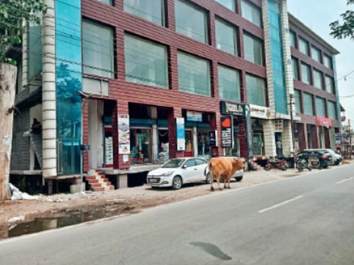 उद्योग लगाने को लीज पर ली जमीन, बना दिया शॉपिंग मॉल, शिकायत मिलने पर 5 साल बाद जागा विभाग|कुल्लू,Kullu - Dainik Bhaskar