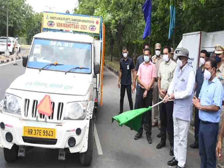 शहर में आज सेवन महोत्सव-2021 का शुभारंभ प्रशासकवीपी सिंह बदनोर नेरिजर्व वन क्षेत्र में जामुन का पौधा लगा कर किया चंडीगढ़,Chandigarh - Dainik Bhaskar