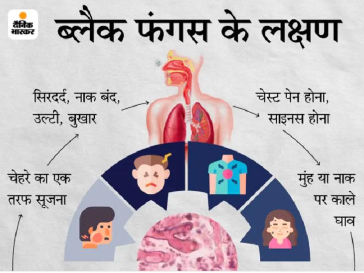 बिलासपुर में ठीक हो चुके लोगों में फिर से मिले लक्षण, CIMS में भर्ती; अब स्वस्थ हो चुके मरीजों से भी लिया जा रहा फीडबैक|छत्तीसगढ़,Chhattisgarh - Dainik Bhaskar