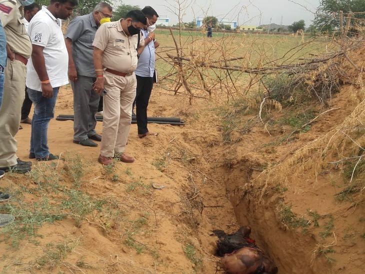 जिंदा जलाया या मार कर लाए, पुलिस जांच में जुटी; खेत की डोल के पास बनी खाई में मिला, FSL टीम ने जुटाए साक्ष्य, शिनाख्त नहीं|अजमेर,Ajmer - Dainik Bhaskar