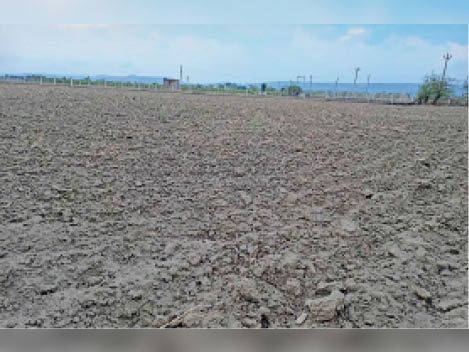 सवाई माधोपुर| जीनापुर गांव के पास बोआई के अभाव में खाली पड़ा खेत। - Dainik Bhaskar