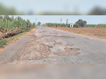रादौर | रादौर-सढुरा सड़क मार्ग। - Dainik Bhaskar