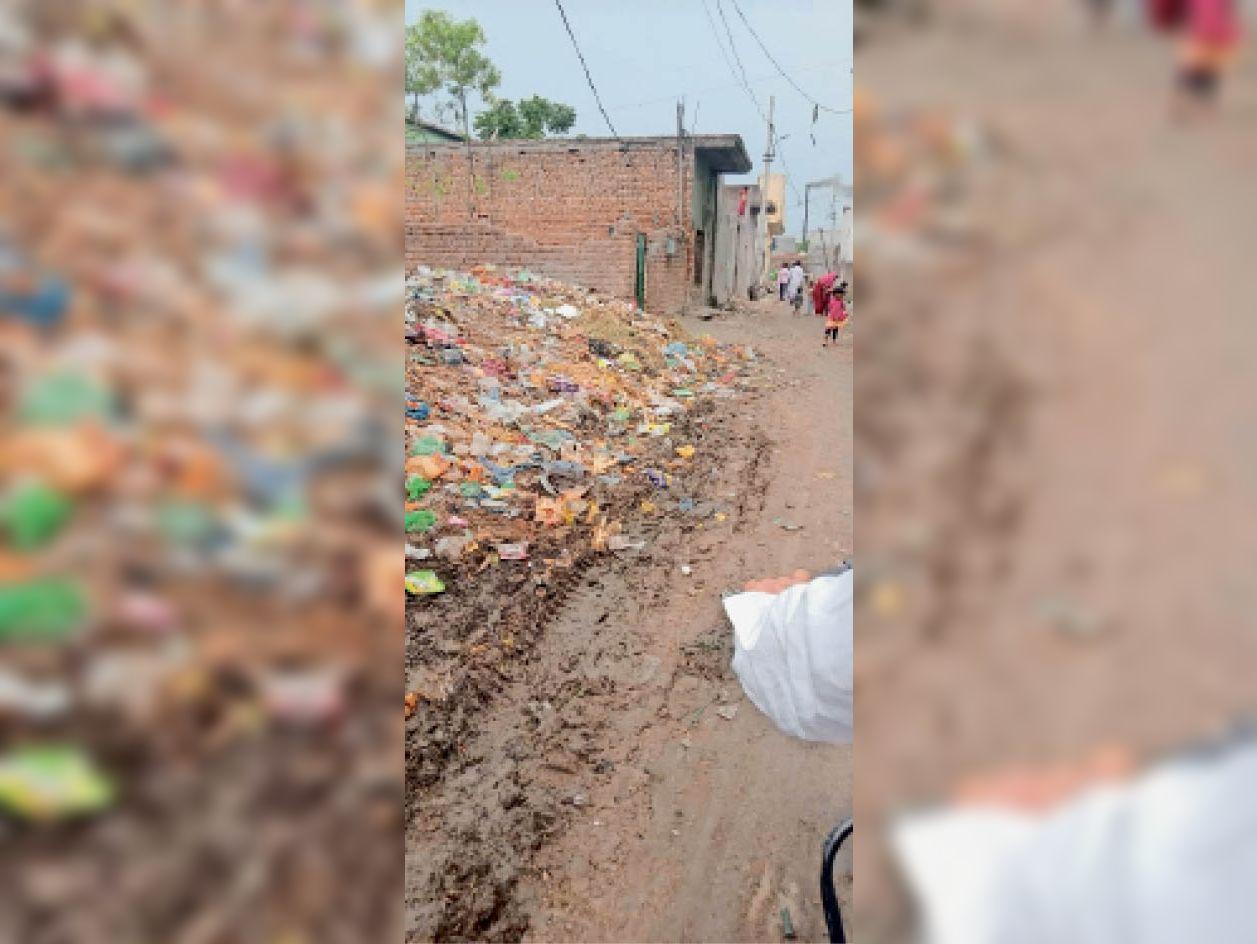 यमुनानगर। निगम में शामिल कामीमाजरा में जगह-जगह कचरे के लगे ढेर। - Dainik Bhaskar