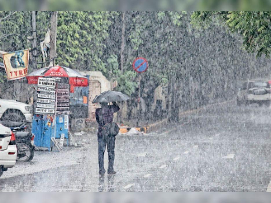बारिश में जालंधर का सूबे में दूसरा स्थान अब तक 162.5 एमएम पानी बरसा|जालंधर,Jalandhar - Dainik Bhaskar
