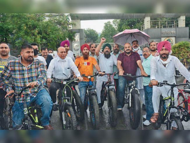पैडलों पर पैर टिकाए, फोटो खिंचवाई और पूरा हो गया कांग्रेसियों का पेट्रोल के खिलाफ प्रदर्शन|जालंधर,Jalandhar - Dainik Bhaskar