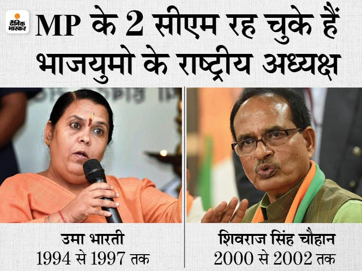 पहली बार...MP से एक भी युवा नेता शामिल नहीं; प्रदेश संगठन ने भेजे थे अभिलाष पांडे सहित 4 नाम, पैरामीटर में एक भी फिट नहीं|मध्य प्रदेश,Madhya Pradesh - Dainik Bhaskar
