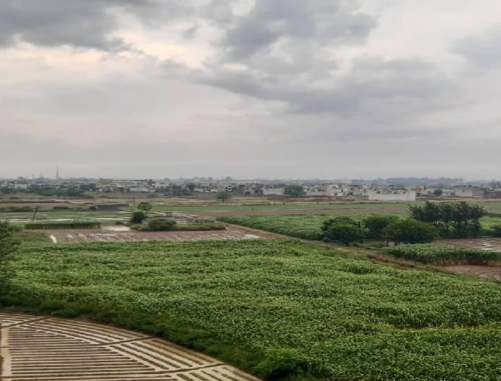 मेरठ में बारिश से सुहाना हुआ मौसम - Dainik Bhaskar