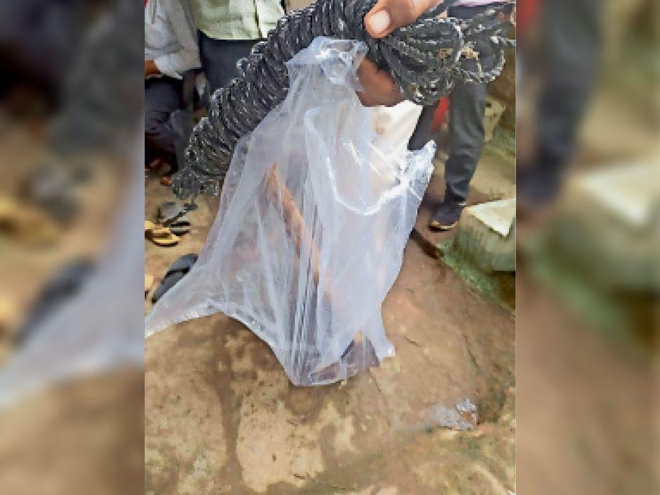 पुलिस ने वह हथियार जब्त किया, जिससे महिला की हत्या की गई। - Dainik Bhaskar