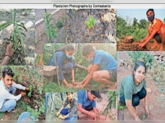 अंकुर कार्यक्रम: लोगों ने पौधरोपण के साथ अपने फोटो शेयर किए। - Dainik Bhaskar