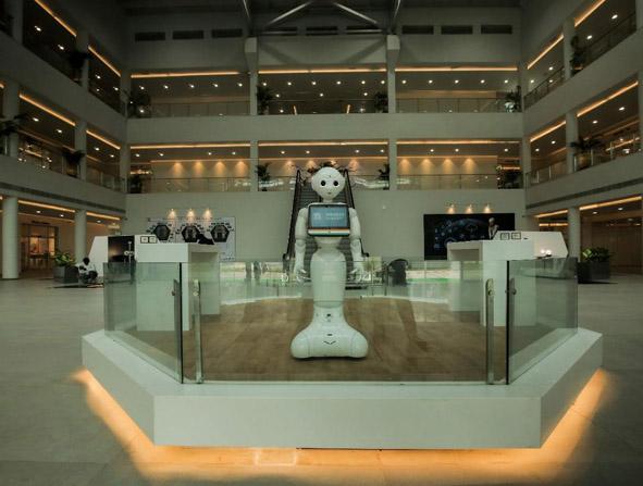 रोबोट्स में दिलचस्पी रखने के वालों के लिए रोबोटिक्स गैलरी बनाई गई है ।