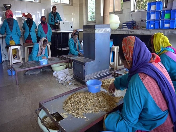 गांव की स्थानीय महिलाएं अमृता की कंपनी के लिए काम करती हैं। वे नेचुरल तरीके से सभी प्रोडक्ट तैयार करती हैं।