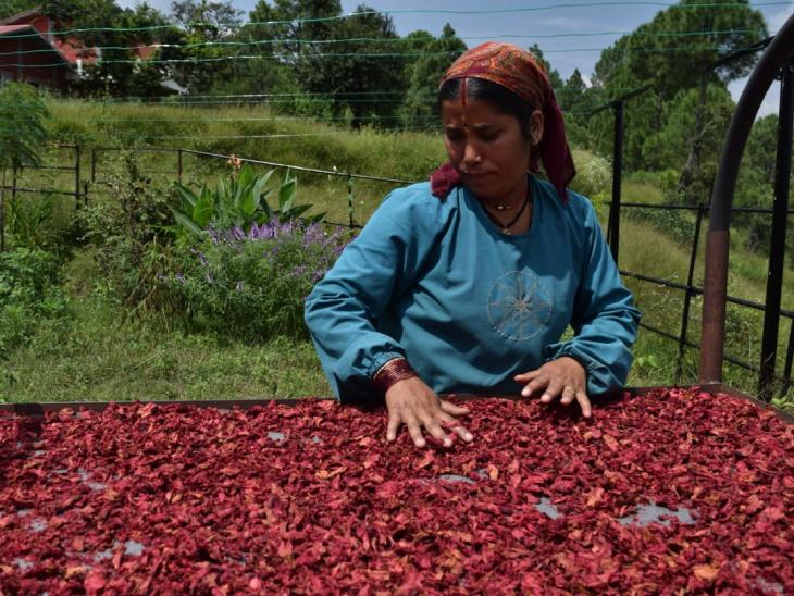 अमृता ने करीब 100 महिलाओं को रोजगार से जोड़ा है। इससे इन महिलाओं की अच्छी कमाई हो जाती है।
