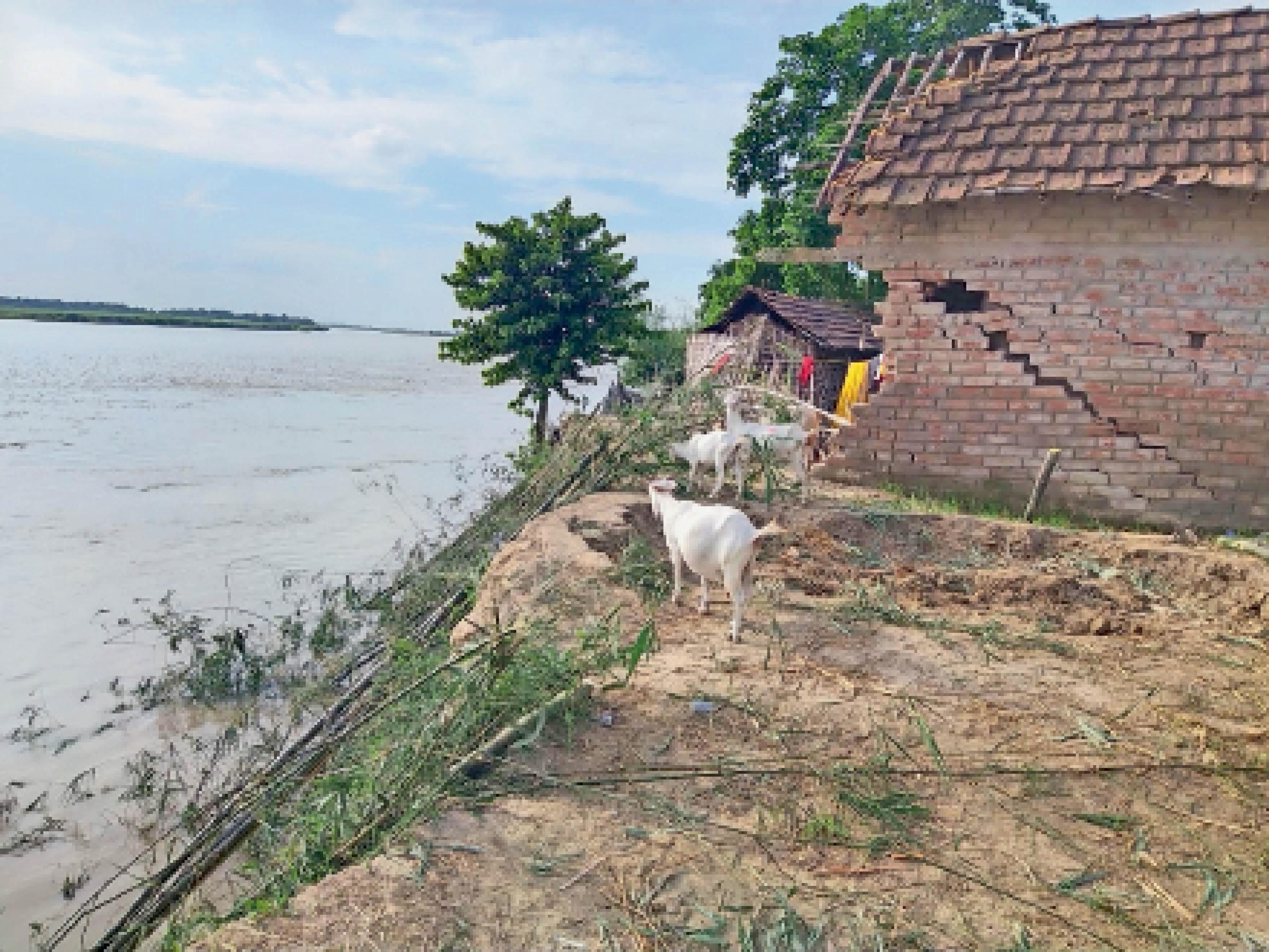 लखनपुर पंचायत वार्ड-9 हाट खोला गांव में महानंदा नदी की जद में घर, जो कभी भी हो सकता है विलीन, इधर शिकारपुर के माहीनगर वार्ड-2 में घर तोड़ ले गए लोग। - Dainik Bhaskar