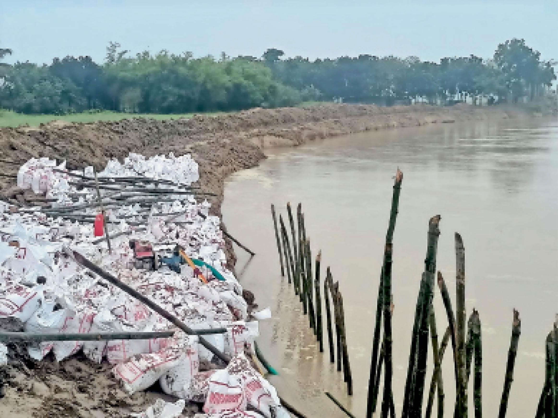 अर्राबाड़ी में परमान नदी से हो रहे कटाव को रोकने के लिए किया गया कार्य। - Dainik Bhaskar