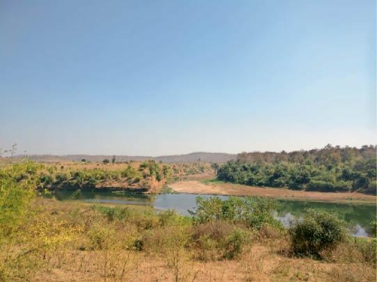 मप्र-महाराष्ट्र के 500 किमी दायरे में ताप्ती मेगा रिचार्ज प्रोजेक्ट का 90%डिटेल सर्वे पूरा|बुरहानपुर,Burhanpur - Dainik Bhaskar
