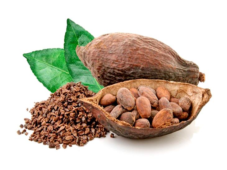कोको फ्रूट