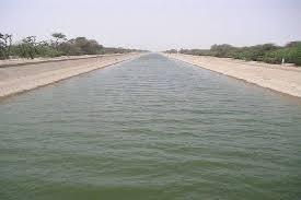 ताबड़तोड़ बारिश के बाद पोंग डेम में उम्मीद से बेहतर पानी आया, पश्चिमी राजस्थान के किसानों को दो बारी पानी की उम्मीद|बीकानेर,Bikaner - Dainik Bhaskar