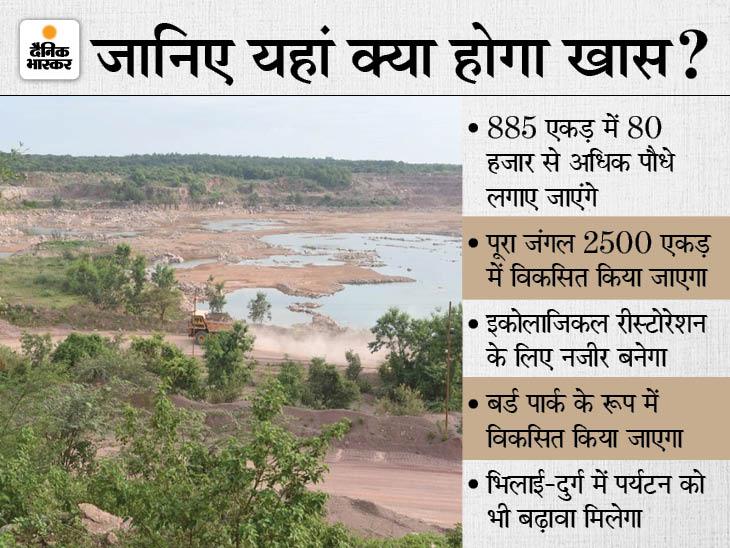 भिलाई में 2500 एकड़ में होगा विकसित, 885 एकड़ में लगाए जाएंगे 80 हजार से अधिक पौधे, 3 साल में 3 करोड़ की आएगी लागत|भिलाई,Bhilai - Dainik Bhaskar