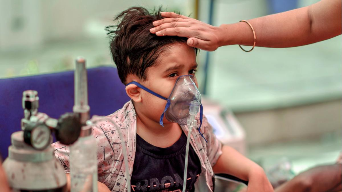 प्रदेश में 0-18 के बीच के 86 लाख बच्चे और किशोर, मई से अब तक 5 हजार मौतें, जिनमें 15 बच्चे शामिल। - Dainik Bhaskar