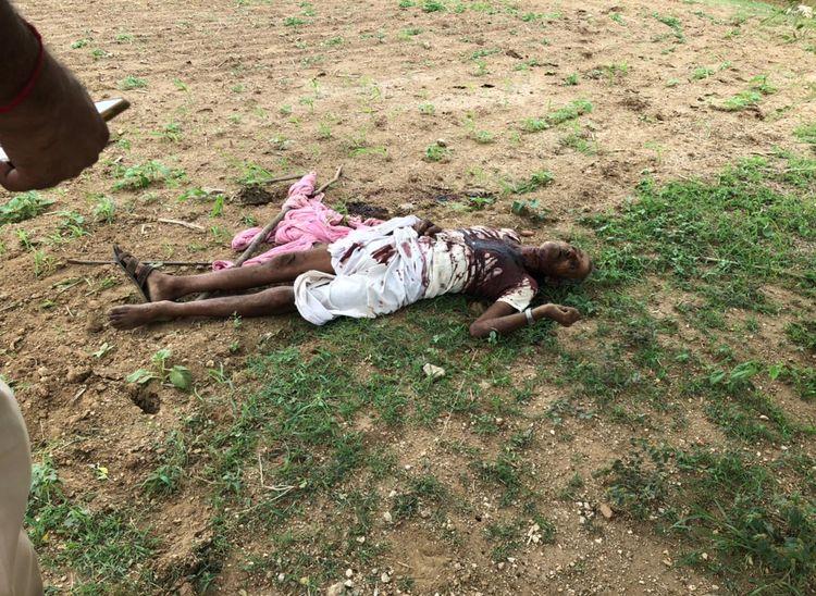 खेत में संदिग्ध परिस्थितियों में मिला वृद्ध का शव, परिजनों ने जताया हत्या का अंदेशा राजस्थान,Rajasthan - Dainik Bhaskar