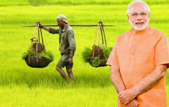शिवसेना सांसद विनायक राऊत ने महाराष्ट्र के किसानों की आय दोगुना करने के लिए मोदी सरकार द्वारा उठाए गए कदमों का ब्यौरा मांगा था। - Dainik Bhaskar