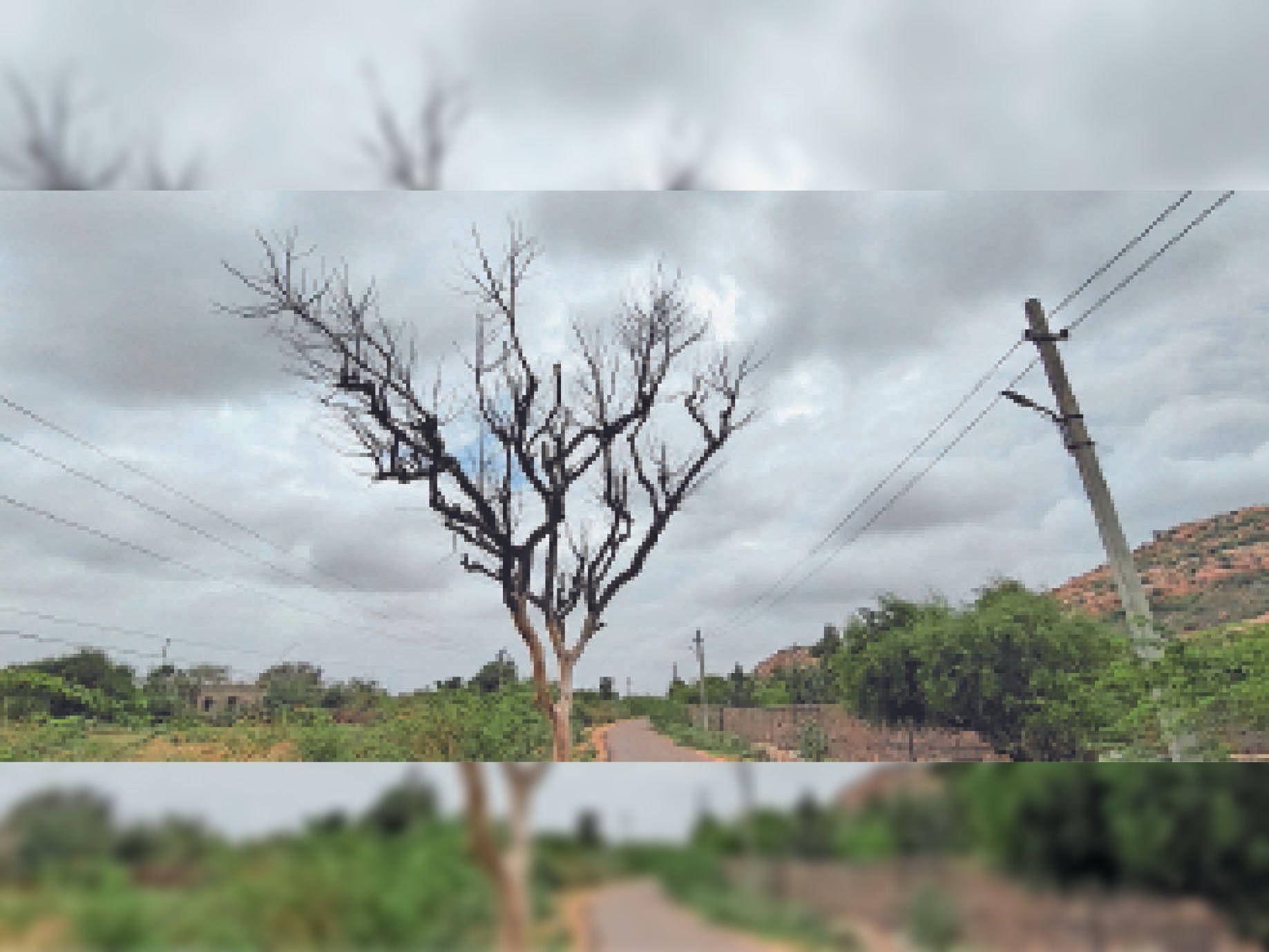 आसमां में छाए बादल। - Dainik Bhaskar