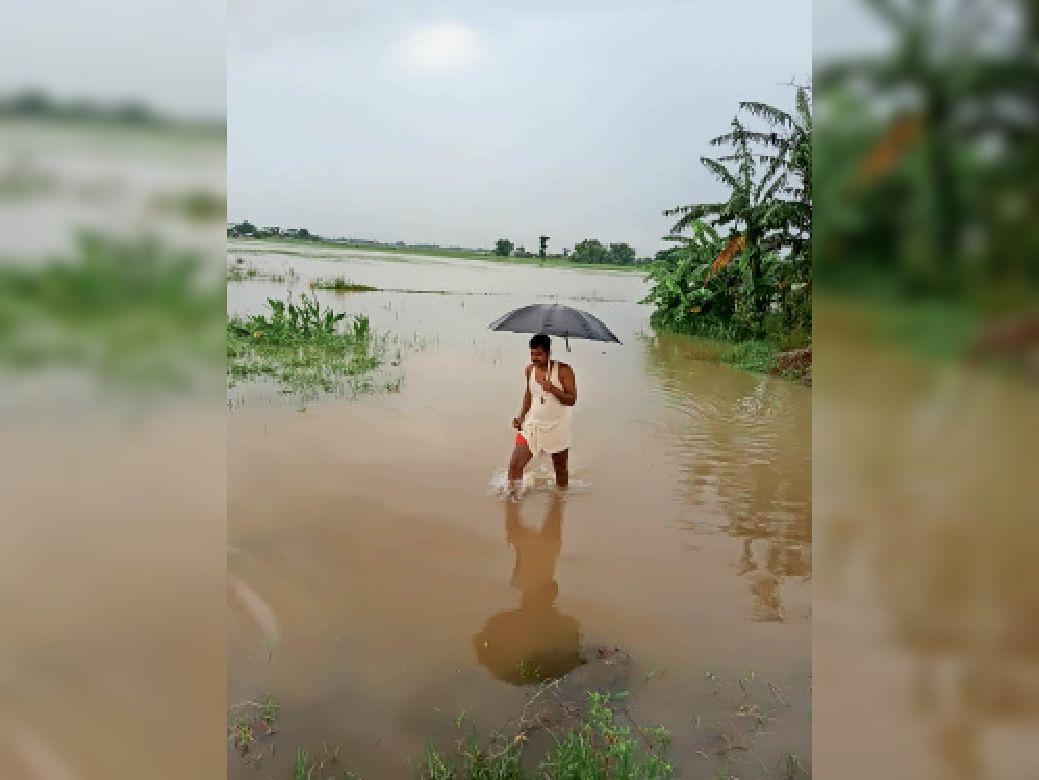 ढोली पंचायत में लोगों के घरों में घुसा बाढ़ का पानी। - Dainik Bhaskar