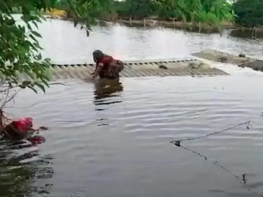 बड़गांव में 500 से ज्यादा घर बूढ़ी गंडक नदी के पानी में डूब गए हैं।