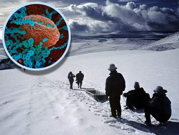 ओहियो स्टेट यूनिवर्सिटी के वैज्ञानिकों को समुद्र तल से 22 हजार फीट ऊंचाई पर कुल 33 वायरस मिले हैं। - Dainik Bhaskar
