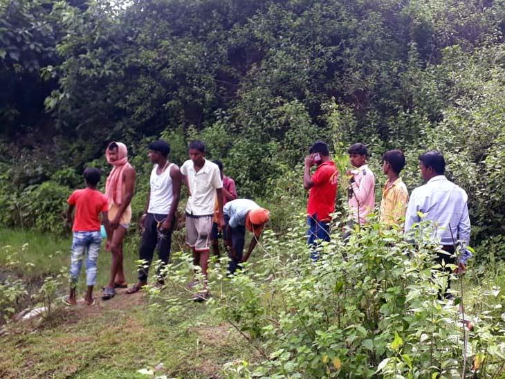सड़ी-गली अवस्था में मिला शव, कपड़े से ढका था चेहरा; हत्या के बाद लाश पेड़ पर लटकाने की आशंका|झारखंड,Jharkhand - Dainik Bhaskar