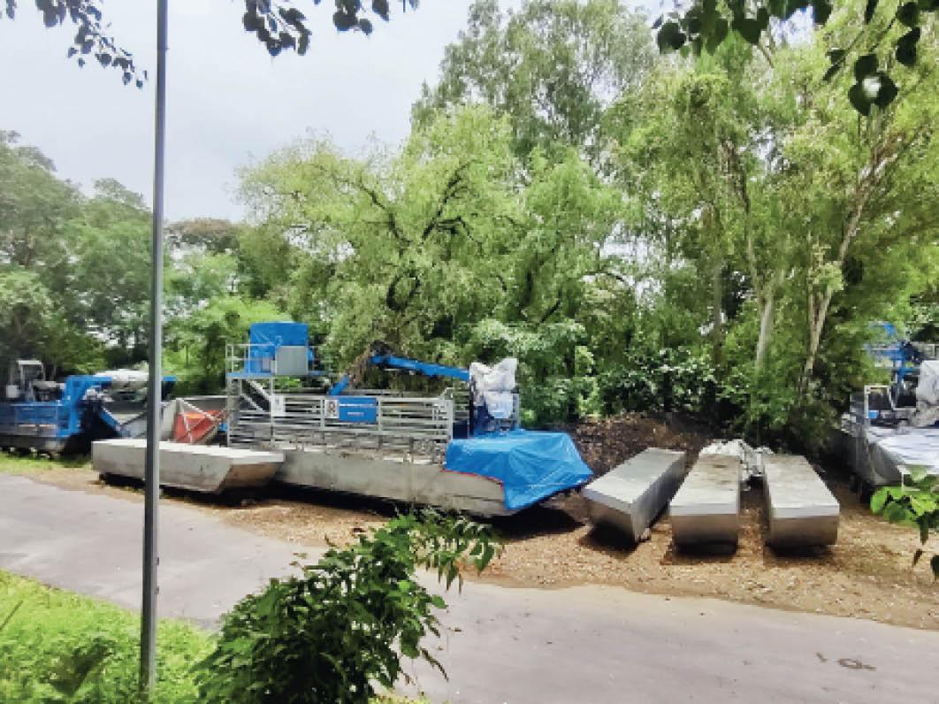 जिन मशीनों से हटानी थी जलकुंभी, उन पर उग गई घास दो मशीनों के लिए तो सालाना चुकाने पड़ रहे 76 लाख रुपए|गुजरात,Gujarat - Dainik Bhaskar