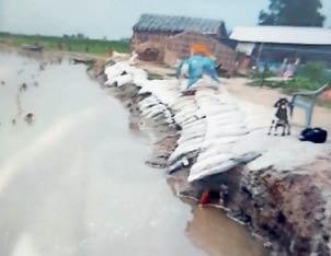 कोसी नदी का कटाव। - Dainik Bhaskar