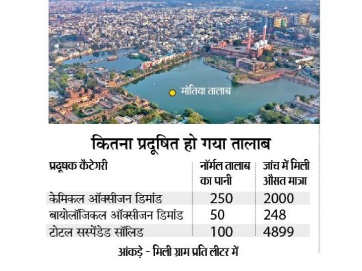 भारत की सबसे बड़ी इबादतगाह ताजुल मसाजिद के पास स्थित ऐतिहासिक मोतिया तालाब का पानी अब लगभग जहरीला हो चुका है। - Dainik Bhaskar