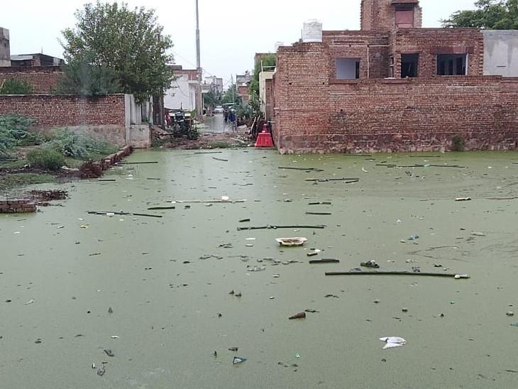 स्थानीय लोग जलभराव के कारण घरों से बाहर निकलने में कतरा रहे, जलभराव की वजह से हो रहे हादसे|भरतपुर,Bharatpur - Dainik Bhaskar