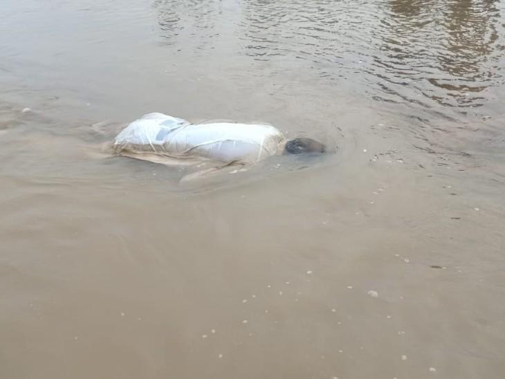 निरंजना नदी में उपलाता हुआ शव। - Dainik Bhaskar