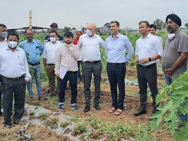इजराइल से आई टीम ने बूढ़ा गांव में की जा रही स्ट्रॉबेरी की खेती को देखा।