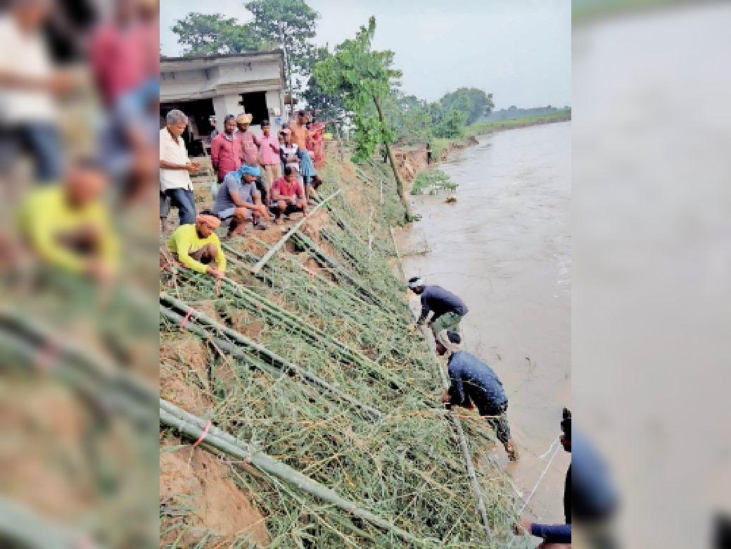 जल निस्सरण विभाग द्वारा पड़रिया गांव में किया जा रहा कटाव निरोधक कार्य। - Dainik Bhaskar